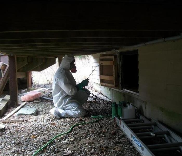 Treating Mold in a Duxbury Home