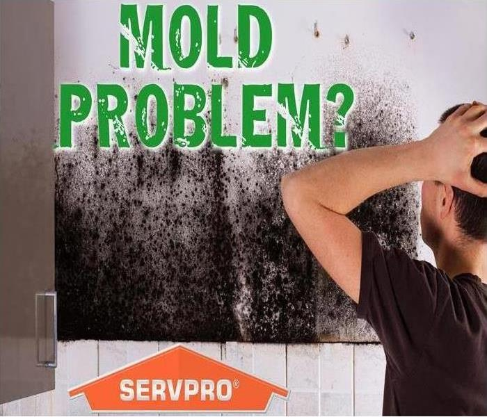 Mold Remediation Plymouth/Wareham Residents: Follow These Mold Safety Tips If You Suspect Mold